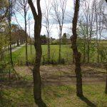 Zie hier het groene pas ingezaaide gras. Daar kunnen straks uw paardjes lopen grazen, na een heerlijke buitenrit.