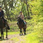 Paardrijden in de buurt